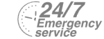 24/7 Emergency Service Pest Control in Brent Cross, Hendon, NW4. Call Now! 020 8166 9746