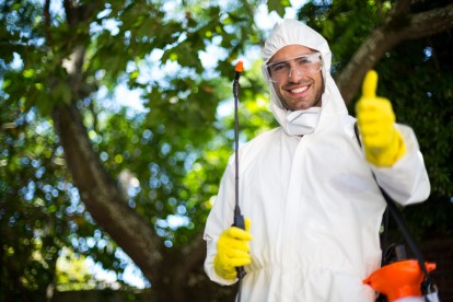 Bug Control, Pest Control in Brent Cross, Hendon, NW4. Call Now 020 8166 9746